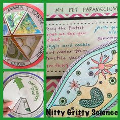 Sampling of activities from The Complete Life Science Interactive Notebook.
