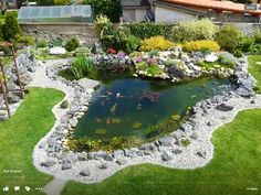 Beautiful backyard pond in the Czech Republic.