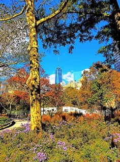 The Freedom Tower peeks above New York's fall foliage. Photo courtesy of eosma on Instagram.