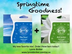 Awesomeness <3 www.lynnebiniker.scentsy.us