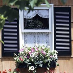 This combination of plantings from BHG would look great on the front of my house.  Now . . . to get my hubby to build the window box . . .