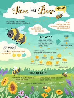 Save The Bees #savethebees #bees #beekeeping #savetheplanet #planetearth #planting #gardening #flowers #honey