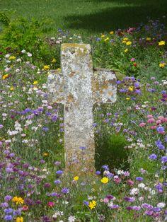 Tussen de veldbloemen, Vienne France pinned from pinner Marit Post Kruis Cross