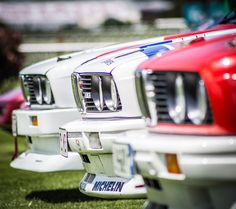 E30 BMW's lined up before a rally by Adam Crouchley - Photo 132654771 / 500px