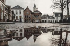 architecture building houses church village street tree branch wet water reflection