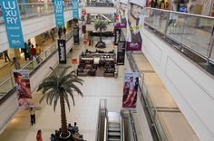 Half-Day Shopping Tour in Chennai Chennai is like a huge market and shopping mall can be found everywhere. Not surprisingly this city is fast making a name for itself as a shopper's paradise. On this tour, youwill be taken to some of the best local shopping spots.This is the tour for shopaholics! Like Hong Kong, Bangkok and Dubai, Chennai is quickly becoming a shopping paradise. The city is a big market where you can buy everything. For this tour, you will be...