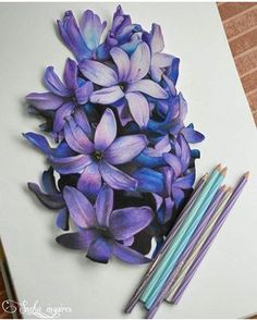 Ideas for beautiful art drawings sketches inspiration colored pencils Colored Pencil Artwork, Color Pencil Art, Colored Pencils, Color Pencil Drawings, Arte Tech, Tech Art, Flower Sketches, Art Sketches, Art Drawings