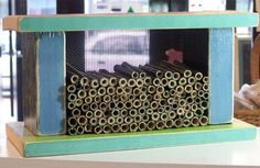 Build a Pollinator House - Class on June 4, 2016. #dabblestlouis