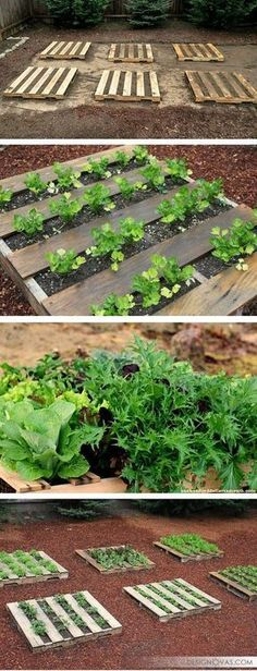 37 creative ways to use pallets in your garden