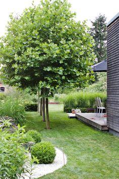 – dieartige // DESIGN STUDIO // Raumpla… The Junigarten. Always surprisingly new. – like // DESIGN STUDIO // Spatial planning 8 practical borders and practical borders and cThoughts on this design Garden Design Plans, Modern Garden Design, Landscape Design, Modern Landscaping, Backyard Landscaping, Landscaping Ideas, Amazing Gardens, Beautiful Gardens, Parrilla Exterior
