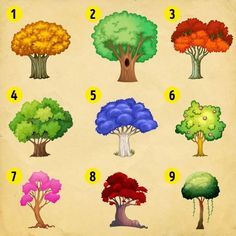 Choose a tree to know what changes the new year holds - Reto Mental, Fb Games, Ready For Change, Decir No, Psychology, How To Find Out, Sigmund Freud, Quizzes, Mbti