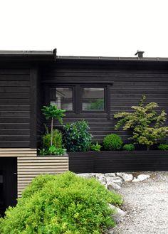 A LUSH GREEN ENTRANCE TO THE HOUSE - Therese Knutsen Love Garden, Home And Garden, Outdoor Spaces, Outdoor Living, Backyard Studio, Entrance Design, Decks And Porches, Terrace Garden, Lush Green