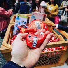New post on the blog : the cutest omikuji of Japan is in Kawagoe ! Like a fisherman catch a tes carp and read what gods are planning for you !  Nouvel article sur le blog : les omikuji les plus mignons du Japon sont à Kawagoe ! En bon apprenti pêcheur attrapez une carpe et découvrez le message divin caché à l'intérieur qui vous dira ce que les dieux ont prévu pour vous !  #japon #japan #travelblog #saitama #kawagoe #hikawa #carp #redcarp #figurine #omikuji #shrine #shinto #kawaidesu… Kyoto, Tokyo, For You, Carpe, Saitama, Japan, God, How To Plan, Reading