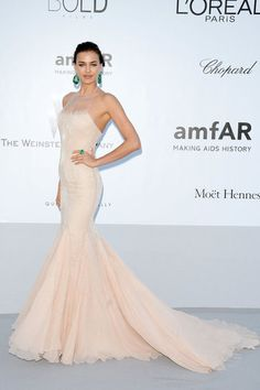 GORGEOUS mermaid silhouette and sparkling, blush pink! Cannes Film Festival 2012 Best Dressed Photo 41 > Cannes Film Festival 2012  Irina Shayk wearing Roberto Cavalli at the amfAR Cinema Against AIDS gala.