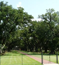 Oak Alley Plantation was completed in 1841 and is famous for the 'oak tree alley' leading to the front of the house. Francois Gabriel 'Valcour' Aime acquired this property and sold it to his brother-in-law Jacques Telesphore in 1836. (See more Aime plantations further down on this page.) This is one of the 'commercialized' plantations that will not let you take pictures inside the house- only of the grounds. (They do sell books that you can purchase of interior photographs.) They do allow photog