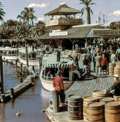 "Daily Vintage Disneyland photo. Bill Cotter collection Jungle Cruise http://www.worldsfairphotos.com/themeparks/disney.htm www.mickeyphotos.com Apple iBooks ""A Photographers Dream"" https://itun.es/us/itjT3.l , Flickr/Twitter/Instagram/Tumblr/Pinterest/Flipboard: msdlpierce7530 Twitter: https://twitter.com/msdlpierce7530 Pinterest: https://pinterest.com/msdlpierce7530 Google+: https://www.google.com/+MickeyphotosDisneyphotos Tumblr: http://msdlpierce7530.tumblr.com/ contact@mickeyphotos.c..."