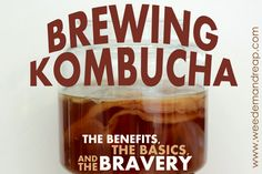 Brewing Kombucha: The Benefits, The Basics & The Bravery CLICK HERE: http://www.weedemandreap.com/2013/10/brewing-kombucha-tea-basics-benefits-bravery.html