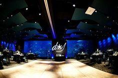 Adventure aquarium wedding (Camden, nj - Google Search