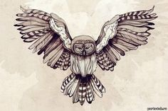 Эскиз татуировки сова в полете