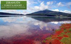 El Lago de Zirahuén, se considera zona de pesca, ya sea para el sustento de la población o como pesca deportiva y existen especies como: truchas, carpa y charales. ¿Ya lo conoces?¿Qué esperas? Nos invita el Hotel Zirahuén Forest  Resort. http://www.zirahuen.com/