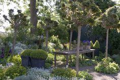 Gartenzauber | Grafs Garten - Gartenzauber