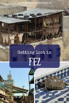 Are you going to Morocco and would you like to visit Fez? The best way to explore Fez and the Medina is to just get lost Fez Morocco, Visit Morocco, Morocco Travel, Africa Travel, Marrakesh, Travel Destinations, Beautiful Places, Graduation, Around The Worlds