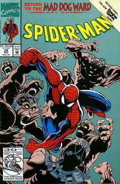 Spider-Man # 29 by Chris Marrinan & Sam De LaRosa