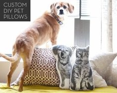 With a generous nod to those animal pillows from Areaware (which we LOVE), artist and blogger Kim from Yellow Brick Home created a tutorial for those of us wanting photo pillows of our own precious pets. If you're in the same boat and eager to see your pooch in pillow form, hit up Yellow Brick Home for the full how-to. While you're at it, check out her custom pet portrait shop, too!