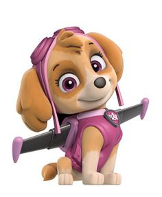 Skye is a cockapoo (Cocker Spaniel/Poodle mix), who is the only female member of the PAW Patrol. Skye is the only female member of the PAW Patrol, her main coloris pink. chasemight have a crush on her, but she doesn't notice that he does since his serious maturity causes him to deny it.Skye is very lovable and emotional Shown in pupssave the bunnies.