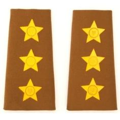 SADF Capt. Field dress rank