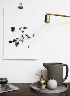 Old brass and grays, minimalist botanic art