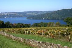 Keuka Lake.....every summer here.