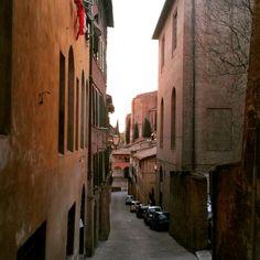 Siena Santuario Santa Caterina