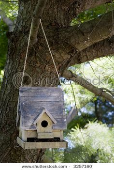 Rustic bird house handing from a tree by a cord or rope.