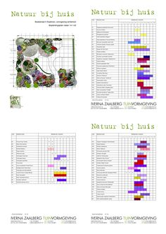 Beplantingsplan- bloeikalender tuinontwerp natuurbijhuis.nl Swalmen
