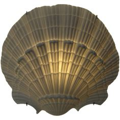 Kneen & Co. - Nymphenburg Shell Sconce