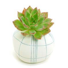 White Porcelain Ceramic Flower Pots / Planter Pots: Blue Dotted Geometry Pebble, Cactus, Succulents, Pottery, Vase, Housewarming, Home Décor by BloomyLifePottery on Etsy