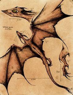~Sketches of Biological Mythology~: AP Art Portfolio 2001-02: Biological Illustrations of Mythical Creatures