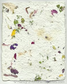 making paper with plants (and without chemicals), posted on October 2012 by hayefield.com, many photos, very inspiring!