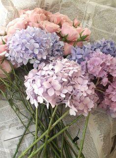 Lilac,powder blue and powder pink. Pastel flowers, really pretty.