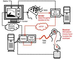 Brain-to-brain interface via Internet replicated and improved