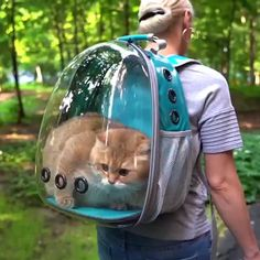 Cats and kittens are the funniest animals on Earth. Just look how all these cats & kittens play, fail, get along with dogs, make funny sounds, Cute Funny Animals, Cute Baby Animals, Animals And Pets, Funny Cats, Happy Animals, Funniest Animals, Cat Backpack Carrier, Cat Carrier, Dog Travel