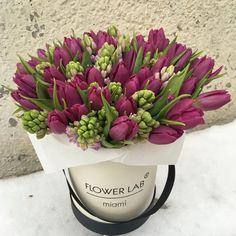 Purple Tulips, Tulips Flowers, Fresh Flowers, Spring Flowers, Planting Flowers, Beautiful Flower Arrangements, Unique Flowers, Amazing Flowers, Colorful Flowers