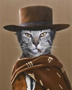 Fall Hats, Cat Hat, Rock Collection, Cat Scratching, Animals Of The World, Cotton Canvas, Canvas Wall Art, Wrapped Canvas, Graphic Art
