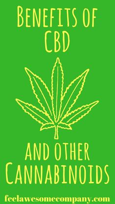 While everyone has heard about THC, not many know about  CBD. The two chemicals are contained in marijuana, but they have very different purposes. CBD is something that offers great benefits from a medical point of view, and does not have the same side effects in the body as THC. #cannabis #CBD #THC #cannabinoids #brainhealth #stress #sleep #depression #pain #happy #awesome #medicine