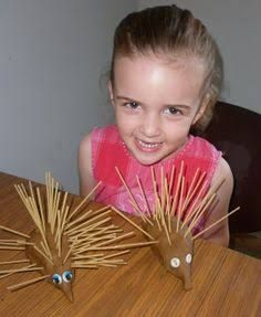 Image result for matchstick echidna