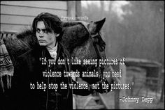 """""""If you don't like pictures of violence animals, you need to help stop the violence, not the pictures."""" ~ Johnny Depp"""