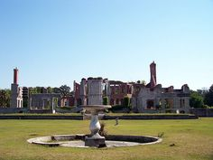 The Ruins of Cumberland Island