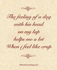 How true...    Just one more benefit of having an awesome puppy or dog.  Free stress relief.