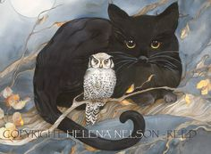 The Owl and the Pussycat best freinds black cat white owl signed giclee I Love Cats, Crazy Cats, Graffiti Kunst, The Pussycat, Owl Art, Cat Drawing, Cats And Kittens, Cat Lovers, Fantasy Art